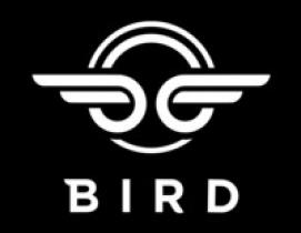 bird plans